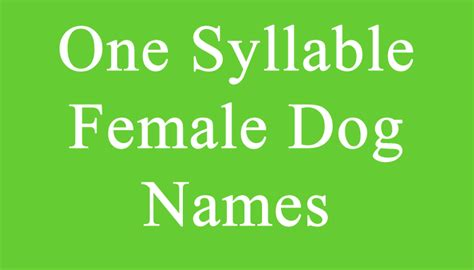 check   syllable female dog names dr odd female