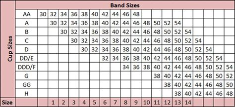 abc breast forms size chart american breast care seamless microbead form 929 new wph