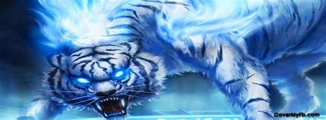 blue fire tiger facebook covers blue fire tiger fb covers