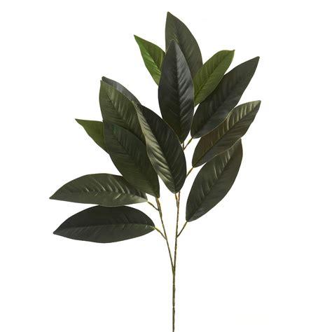 ashland floral essentials magnolia leaf spray
