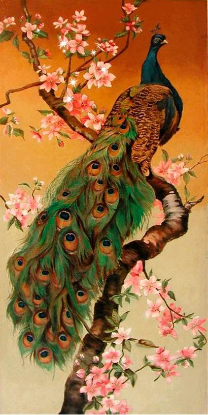 Peacock Birds Peacocks Bird Painting Amazing Breathtaking
