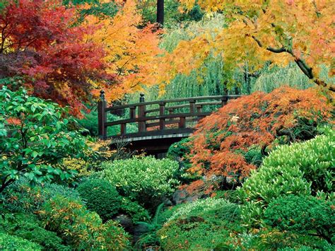 Beautiful Autumn Garden by 1001archives Autumn Is Here 3