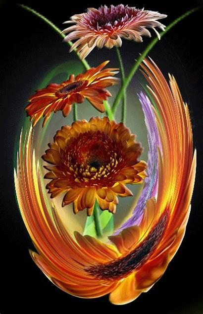 Gifs Flowers Fleurs Belles Gerbery Flores Glitter