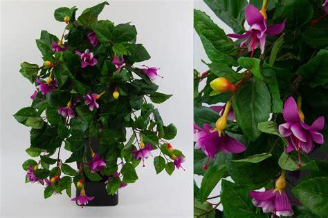 fuchsien überwintern im topf fuchsien ranke 50cm wei 223 violett pf kunstpflanzen kunstblumen k 252 nstliche fuchsie ebay