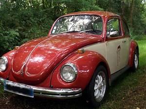 Ford Vienne : location ford mustang de 1965 pour mariage haute vienne ~ Gottalentnigeria.com Avis de Voitures