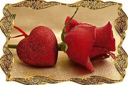 Glitter Rose Gold Lovethispic