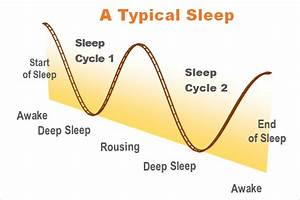 Sleep Cycles  Remember The 90 Minute Rule