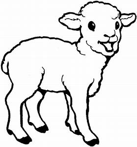 free printable sheep coloring pages for kids With lamb template to print