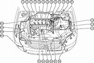 2001 Toyota Corolla Engine Diagram