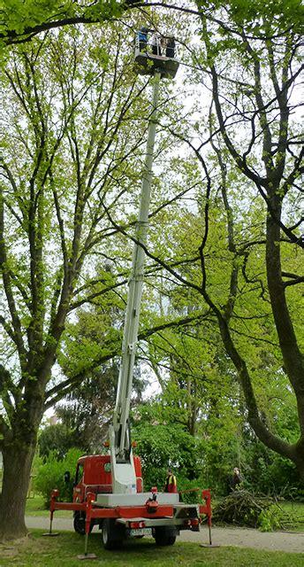Garten Landschaftsbau Marburg by Hoch Hinaus Mit Dem Dbm Dienstleistungsbetriebe Marburg