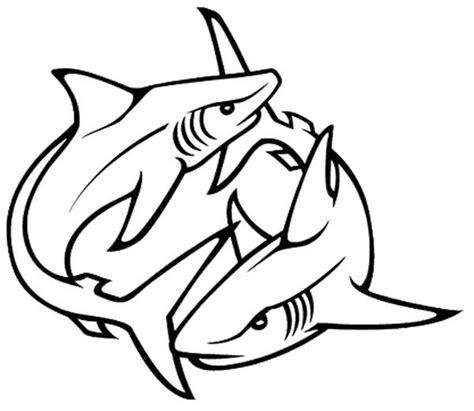 62 Best Shark Tattoo Designs & Ideas