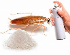 Эффективное средство от аденоидов