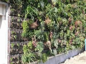 Mur Vegetal Exterieur : id e d co et colo pour l ext rieur le mur v g tal ~ Melissatoandfro.com Idées de Décoration