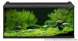 Eheim Aquapro 126 : acuario eheim aquapro 180 led kit ~ Orissabook.com Haus und Dekorationen