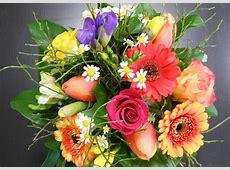 Inspirationen von Life Flower, Ihrem Blumengeschäft in Köln