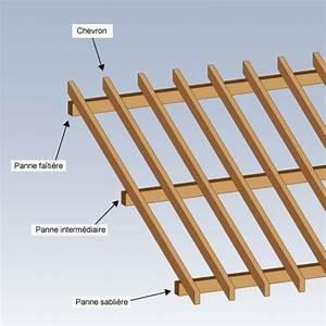 Comment construire un toit a 2 pentes pour abri de jardin for Maison a finir soi meme 2 comment construire un toit 224 2 pentes pour abri de jardin