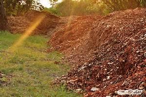 Kompost Anlegen Anleitung : h gelbeet anlegen und bepflanzen als alternative zum hochbeet ~ Watch28wear.com Haus und Dekorationen
