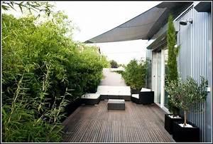 bambus pflanzen sichtschutz balkon balkon house und With französischer balkon mit bambus pflanzen garten
