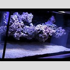 The Floating Reef Aquascape Tutorial By Coral Gardens (en