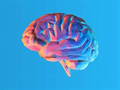 Brain Ocd Causes Scans Inefficient