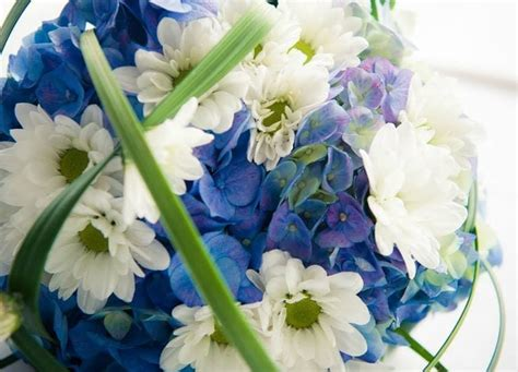 significato dei fiori ortensia addobbi floreali matrimonio il significato dei fiori