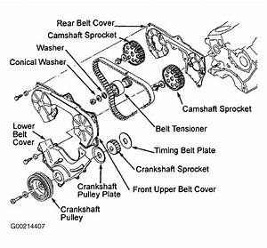 2004 Nissan Frontier Serpentine Belt Routing And Timing Belt Diagrams