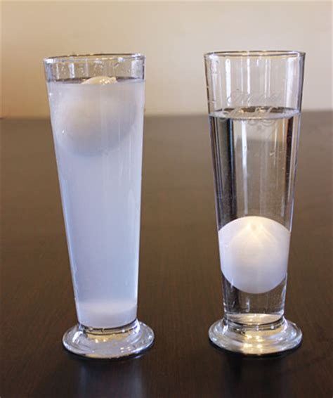 Eggs That Sink In Water by Floating Egg Experiment Fun Family Crafts
