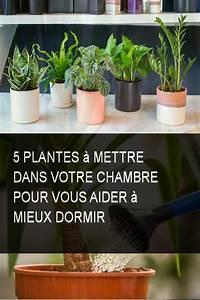 Plantes Pour Chambre : 5 plantes mettre dans votre chambre pour vous aider mieux dormir astuces maison diy ~ Melissatoandfro.com Idées de Décoration