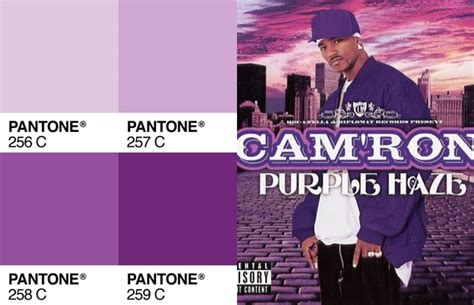 pantone   camron purple complex color