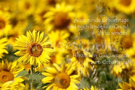 runde geburtstage sonnenblumen www stimmungs bilder de