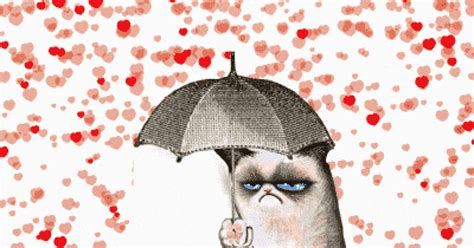 reasons valentines day