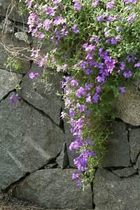 Steine Mauer Garten : steine mauer garten der artikel mit der oldthing id 39 14385298 39 ist aktuell steine mauern ~ Watch28wear.com Haus und Dekorationen