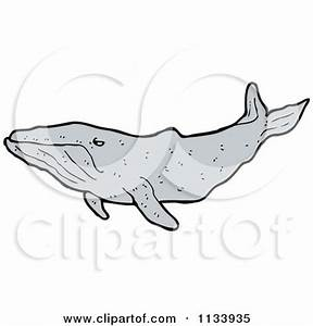 Cartoon Of A Happy Cute Humpback Whale - Royalty Free ...
