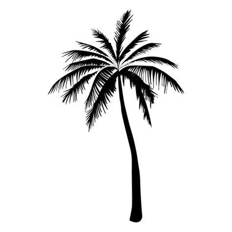 palm tree clipart black and white no background palm tree silhouette in black transparent png svg vector