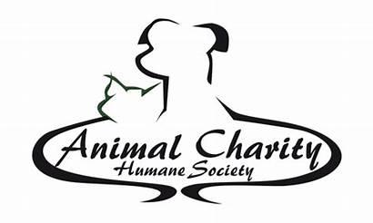 Animal Charities Animals Agent Humane Ohio Wfmj