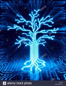 Glowing Digital Tree On Circuit Board  Conceptual