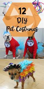 12 diy pet costumes yesterday on tuesday