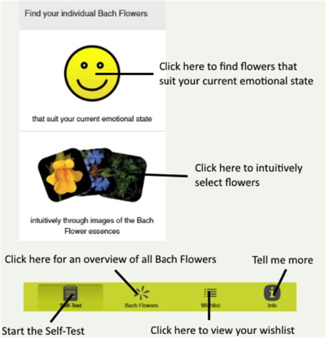 fiori bach test autotest fiori di bach original bachflower