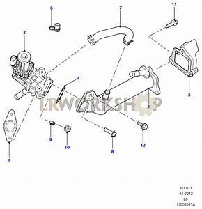 Exhaust Gas Recirculation - 2 2 Tdci