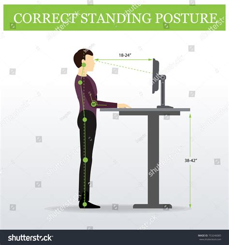 Ergonomic Correct Standing Posture On Height Stock Vector
