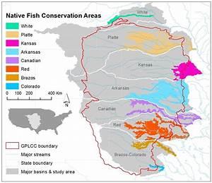 Conservation Assessment | Native Fish Conservation