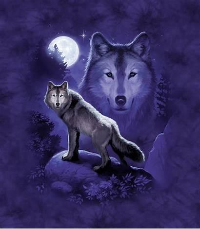 Wolf James Ryman Artwork Decalgirl Designs