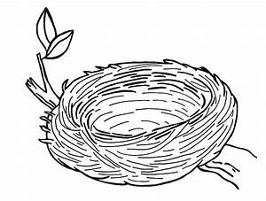 Bird's Nest clipart colouring - Pencil and in color bird's ...