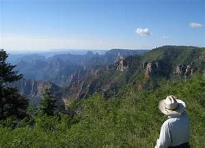 An Insider U0026 39 S Guide To Camping Near The Grand Canyon