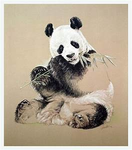 250 best images about Bears paintings and drowings on ...