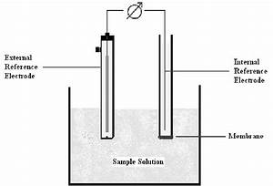 A Schematic Diagram Of An Ion