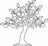 Elm Coloring Tree Pages Getcolorings Printable Trees Colouring sketch template
