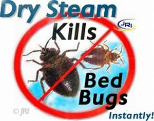 kill bed bugs instantly bug zapper dry vapor steam cleaner With dry cleaning kill bed bugs