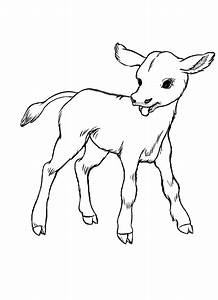 Cute Cow Drawings - Cliparts.co