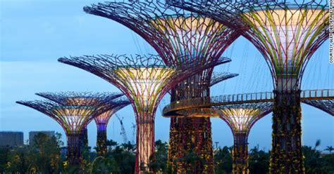 building cities  biomimicry allen york